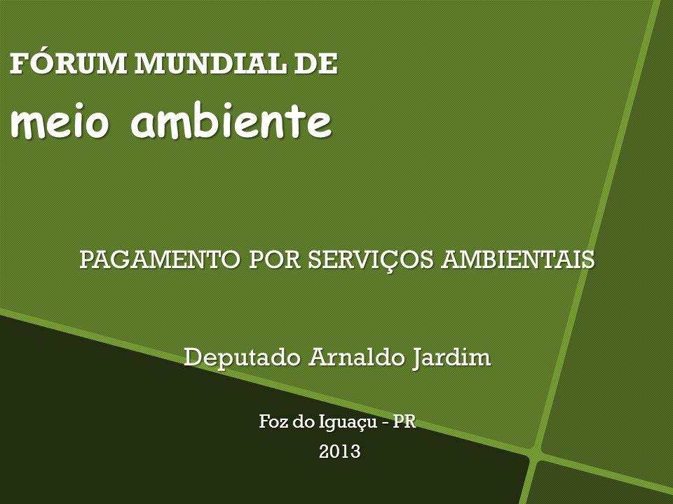 FÓRUM MUNDIAL DE meio ambiente PAGAMENTO POR SERVIÇOS AMBIENTAIS Deputado Arnaldo Jardim Foz do Iguaçu - PR 2013 2013
