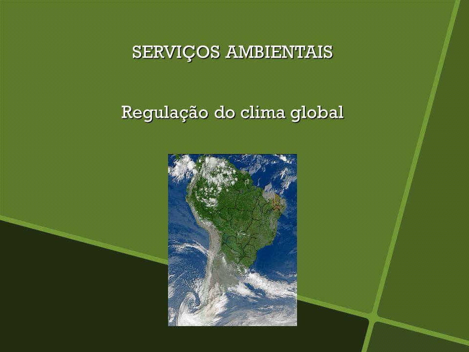SERVIÇOS AMBIENTAIS Regulação do clima global