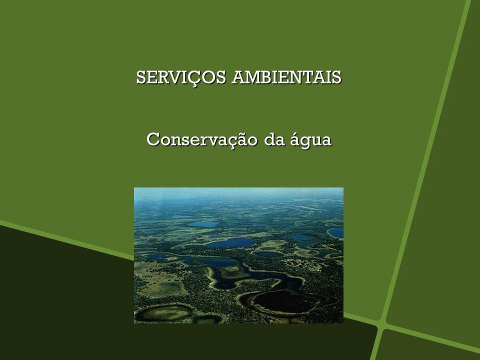 SERVIÇOS AMBIENTAIS Polinização, dispersão de sementes e controle de pragas