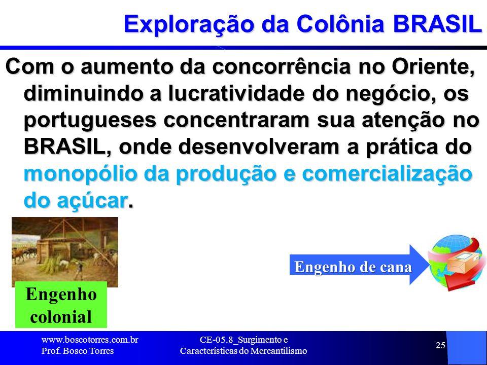 CE-05.8_Surgimento e Características do Mercantilismo 25 Exploração da Colônia BRASIL Com o aumento da concorrência no Oriente, diminuindo a lucrativi