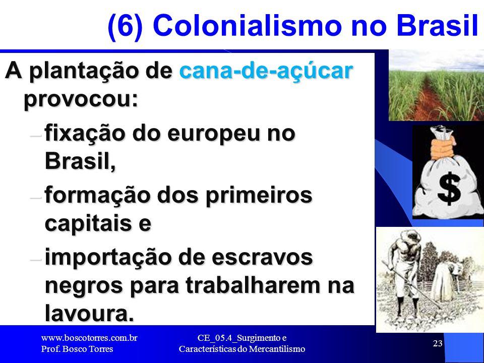 CE_05.4_Surgimento e Características do Mercantilismo 23 (6) Colonialismo no Brasil A plantação de cana-de-açúcar provocou: – fixação do europeu no Br