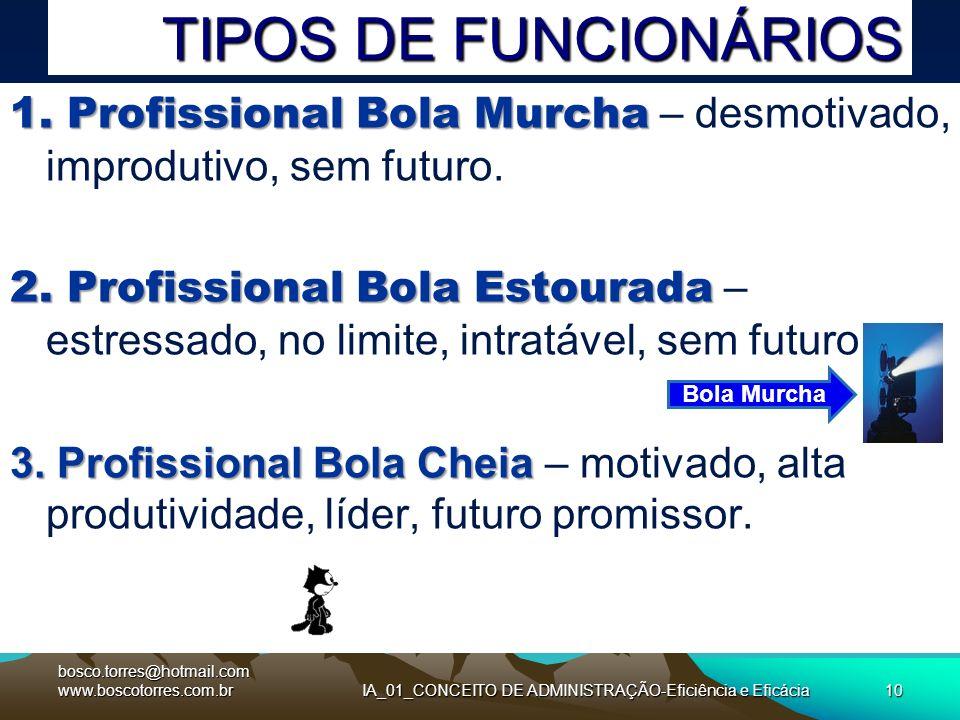 TIPOS DE FUNCIONÁRIOS 1. Profissional Bola Murcha 1. Profissional Bola Murcha – desmotivado, improdutivo, sem futuro. 2. Profissional Bola Estourada 2