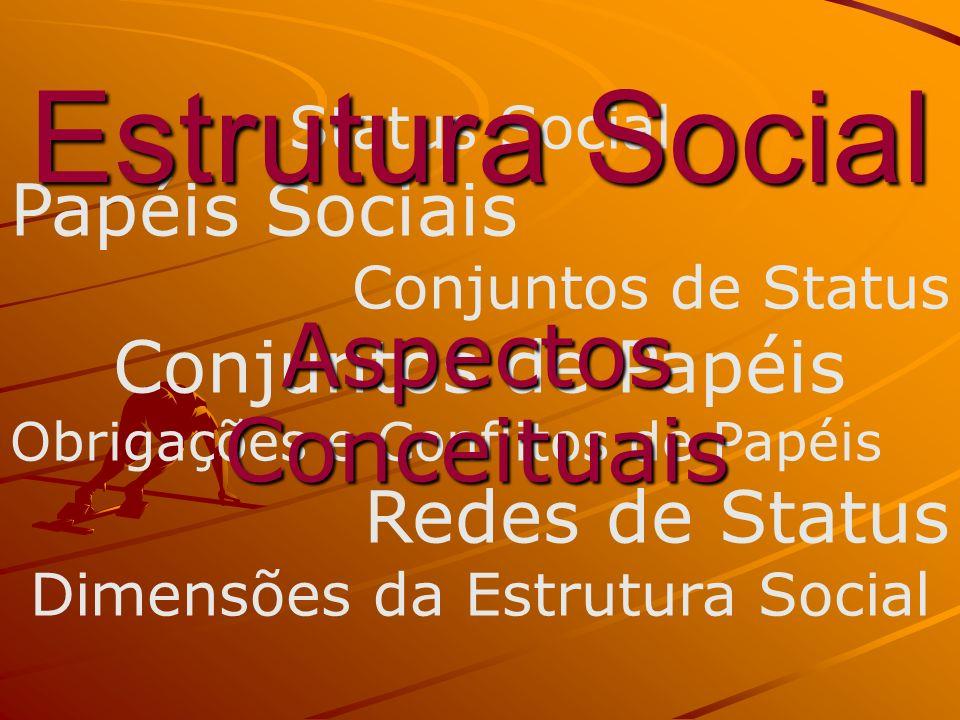 Status Social Papéis Sociais Conjuntos de Status Conjuntos de Papéis Obrigações e Conflitos de Papéis Redes de Status Dimensões da Estrutura Social Es