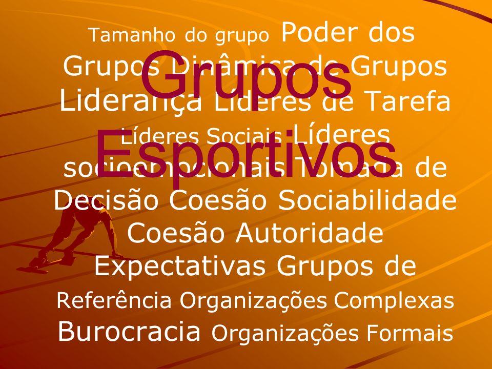 Tamanho do grupo Poder dos Grupos Dinâmica de Grupos Liderança Líderes de Tarefa Líderes Sociais Líderes socioemocionais Tomada de Decisão Coesão Soci