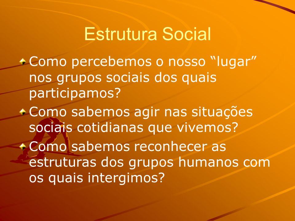 Elementos da Estrutura social Status Papéis Sociais Conjuntos de Status Conjuntos de Papéis Obrigações e Conflitos de Papéis Redes de Status Dimensões da Estrutura Social