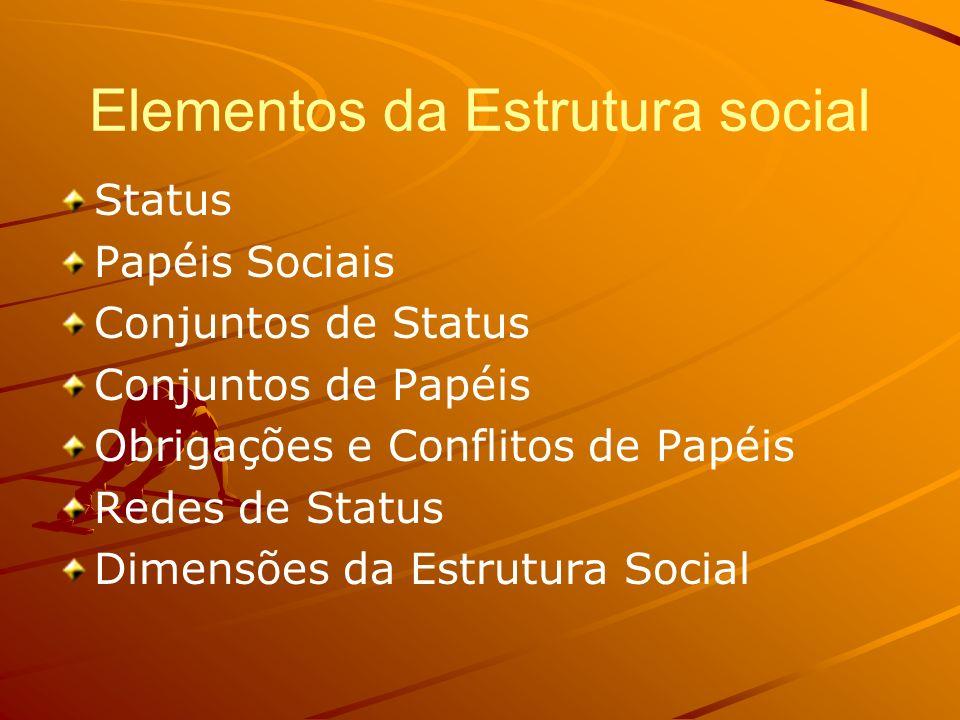 Elementos da Estrutura social Status Papéis Sociais Conjuntos de Status Conjuntos de Papéis Obrigações e Conflitos de Papéis Redes de Status Dimensões