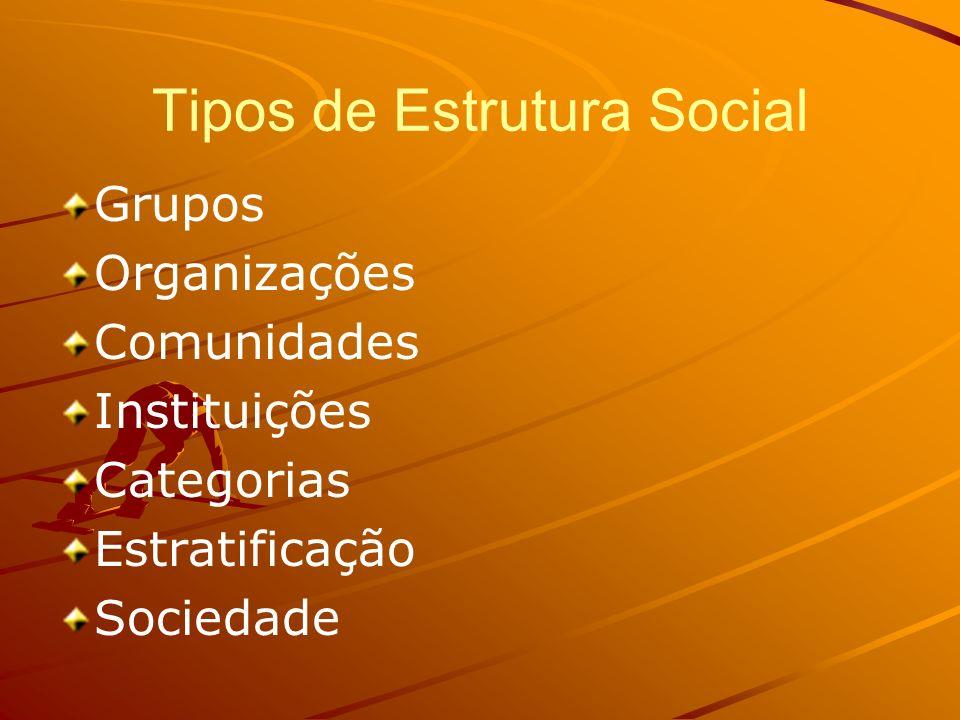 Tipos de Estrutura Social Grupos Organizações Comunidades Instituições Categorias Estratificação Sociedade