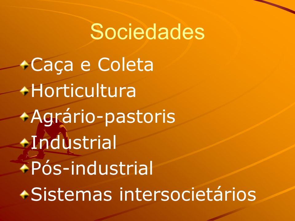Sociedades Caça e Coleta Horticultura Agrário-pastoris Industrial Pós-industrial Sistemas intersocietários