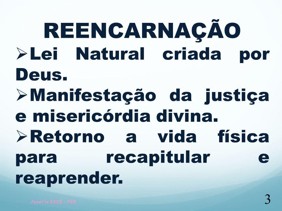 Apostila ESDE - FEB 3 REENCARNAÇÃO Lei Natural criada por Deus. Manifestação da justiça e misericórdia divina. Retorno a vida física para recapitular