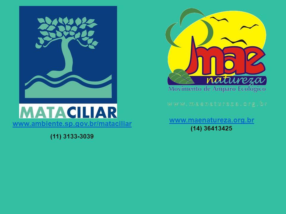 www.ambiente.sp.gov.br/mataciliar (11) 3133-3039 www.maenatureza.org.br (14) 36413425