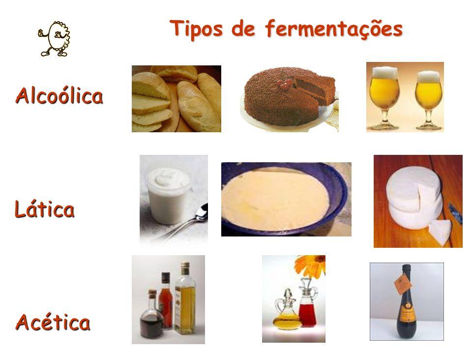 AlcoólicaLáticaAcética Tipos de fermentações