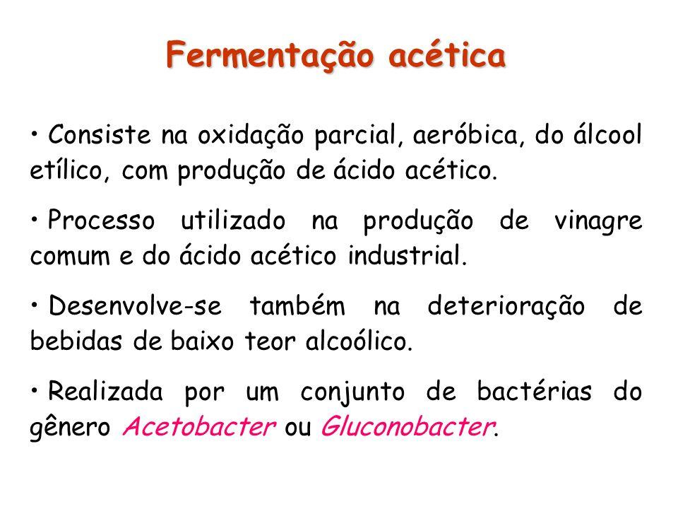 Fermentação acética Consiste na oxidação parcial, aeróbica, do álcool etílico, com produção de ácido acético. Processo utilizado na produção de vinagr