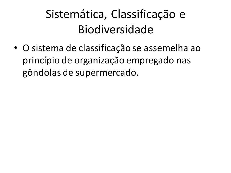 O sistema de classificação se assemelha ao princípio de organização empregado nas gôndolas de supermercado. Sistemática, Classificação e Biodiversidad