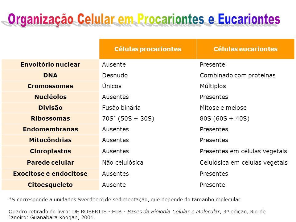 Células procariontesCélulas eucariontes Envoltório nuclearAusentePresente DNADesnudoCombinado com proteínas CromossomasÚnicosMúltiplos NucléolosAusentesPresentes DivisãoFusão bináriaMitose e meiose Ribossomas70S * (50S + 30S)80S (60S + 40S) EndomembranasAusentesPresentes MitocôndriasAusentesPresentes CloroplastosAusentesPresentes em células vegetais Parede celularNão celulósicaCelulósica em células vegetais Exocitose e endocitoseAusentesPresentes CitoesqueletoAusentePresente *S corresponde a unidades Sverdberg de sedimentação, que depende do tamanho molecular.