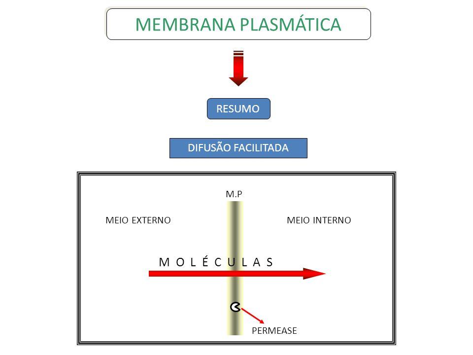 RESUMO DIFUSÃO FACILITADA MEMBRANA PLASMÁTICA M.P M O L É C U L A S PERMEASE MEIO INTERNOMEIO EXTERNO
