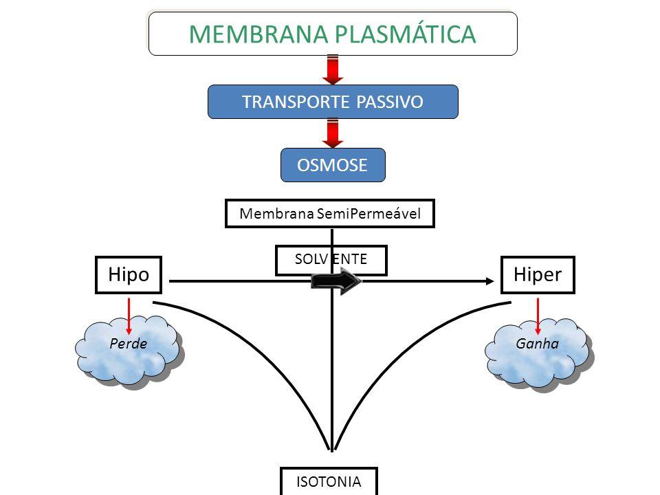 OSMOSE Perde Ganha HipoHiper ISOTONIA SOLV ENTE Membrana SemiPermeável TRANSPORTE PASSIVO MEMBRANA PLASMÁTICA