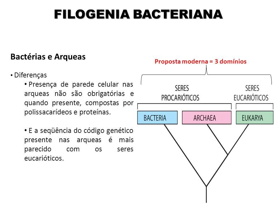 FILOGENIA BACTERIANA Bactérias e Arqueas Diferenças Presença de parede celular nas arqueas não são obrigatórias e quando presente, compostas por polis