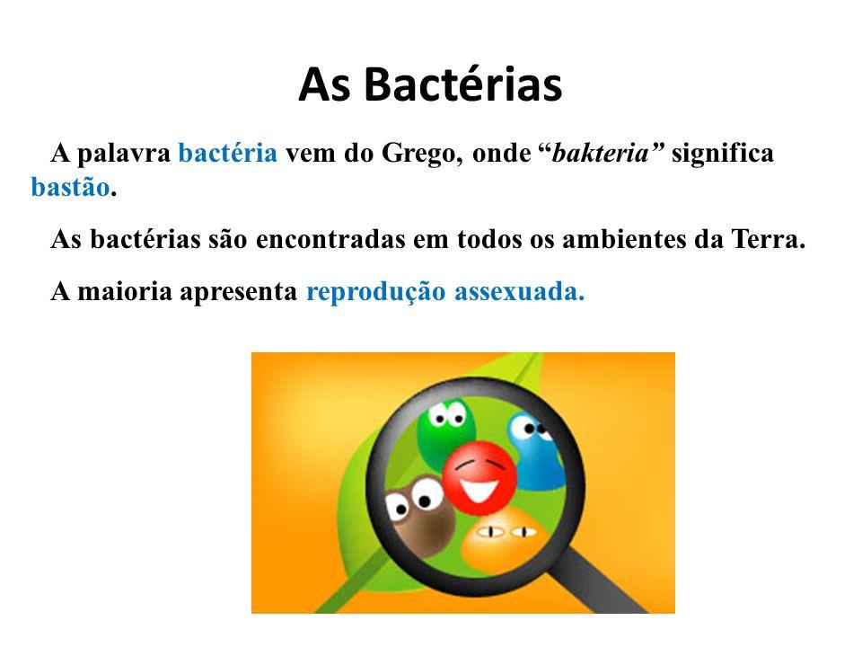 As Bactérias A palavra bactéria vem do Grego, onde bakteria significa bastão. As bactérias são encontradas em todos os ambientes da Terra. A maioria a