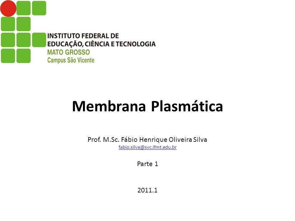Membrana Plasmática Prof. M.Sc. Fábio Henrique Oliveira Silva fabio.silva@svc.ifmt.edu.br Parte 1 2011.1 fabio.silva@svc.ifmt.edu.br