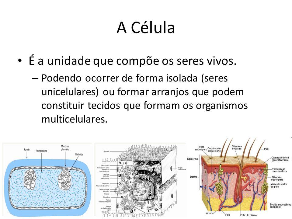 A Célula É a unidade que compõe os seres vivos. – Podendo ocorrer de forma isolada (seres unicelulares) ou formar arranjos que podem constituir tecido