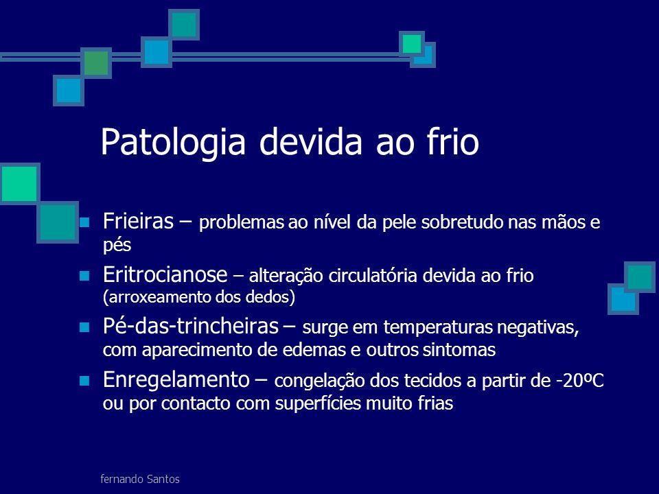 fernando Santos Patologia devida ao frio Frieiras – problemas ao nível da pele sobretudo nas mãos e pés Eritrocianose – alteração circulatória devida