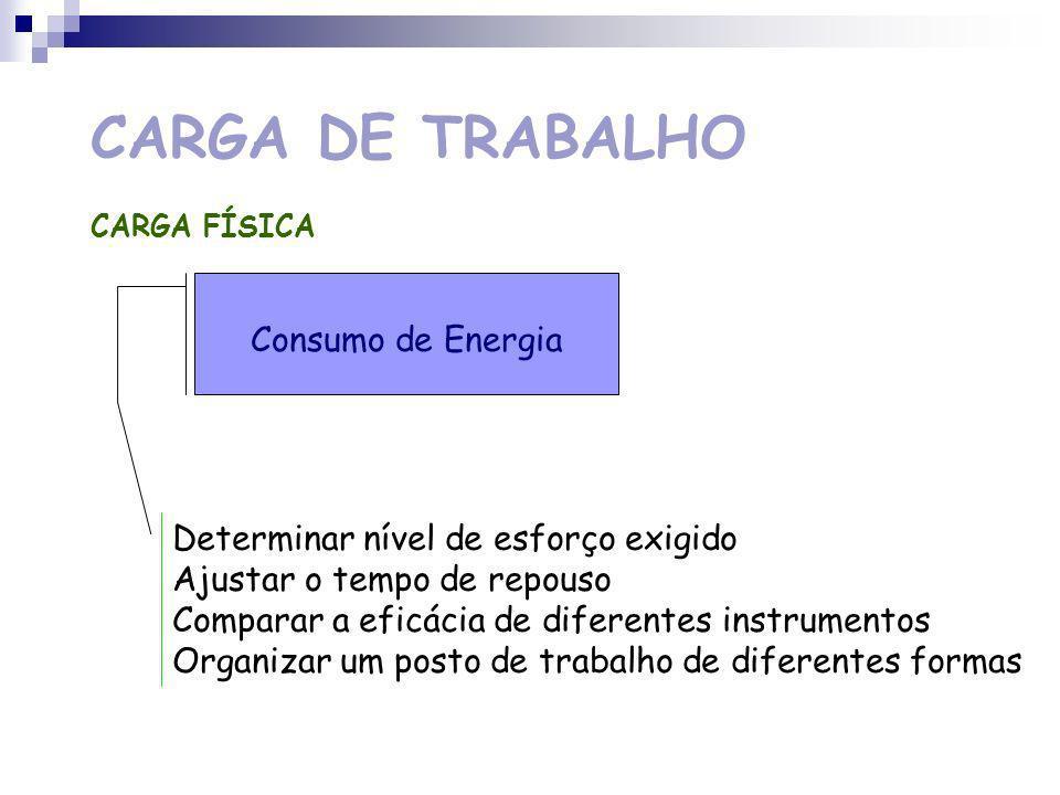 CARGA DE TRABALHO CARGA FÍSICA TRABALHO (30%) ENERGIAENERGIA CALOR TRABALHO ESTÁTICO (70%) TRANSPORTE E SUPORTE DE CARGAS