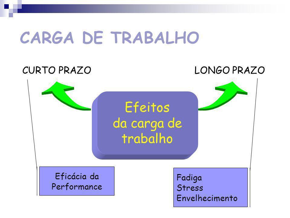 CARGA DE TRABALHO Factores determinantes da carga de trabalho SITUAÇÃO DE TRABALHO FACTORES SOCIAIS OPERADOR PROCESSOS OPERATÓRIOS
