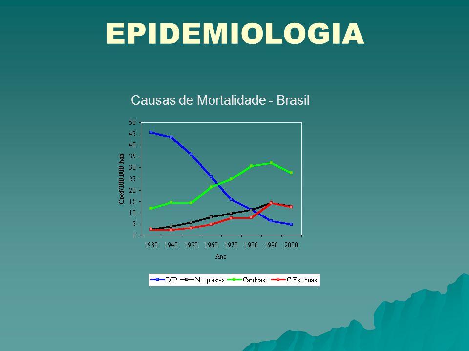 Causas de Mortalidade - Brasil
