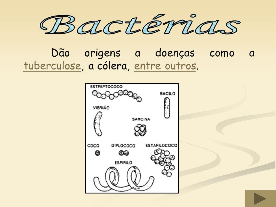 São mais pequenos que as bactérias e originam doenças como o sarampo, a rubéola, a gripe, a sida, entre outros.