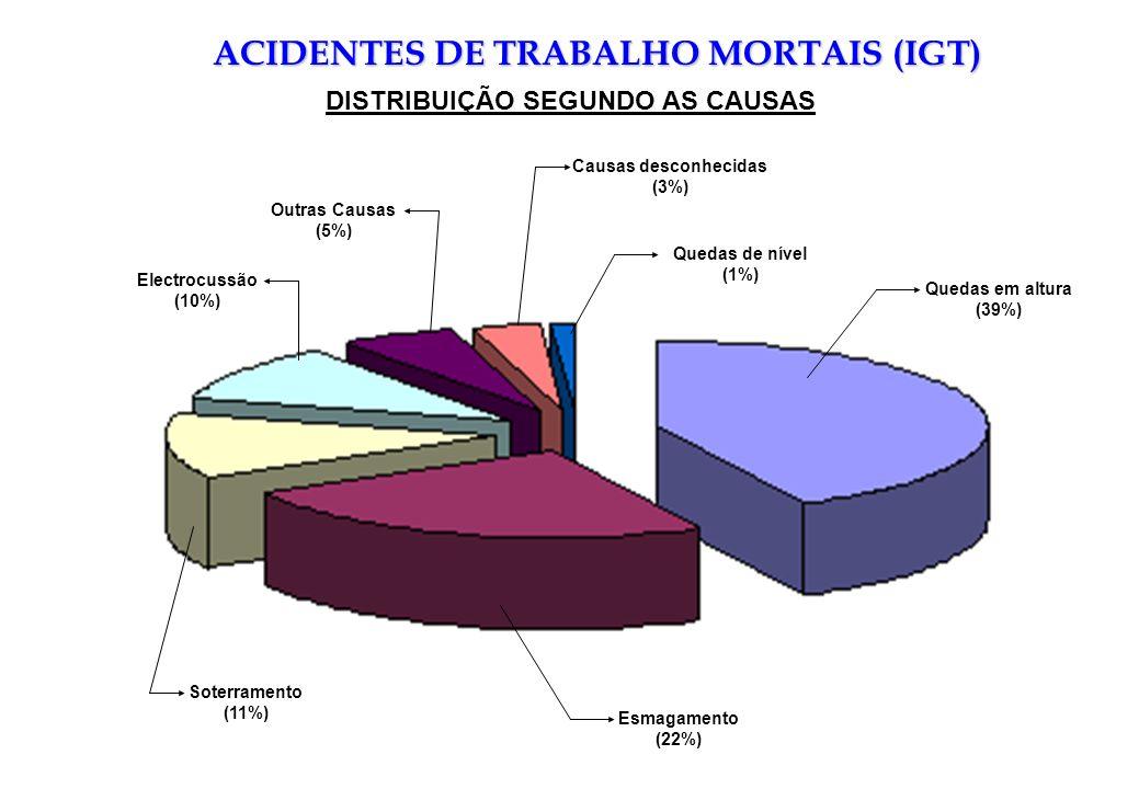 Quedas em altura (39%) Quedas de nível (1%) Causas desconhecidas (3%) Outras Causas (5%) Electrocussão (10%) Soterramento (11%) Esmagamento (22%) ACID