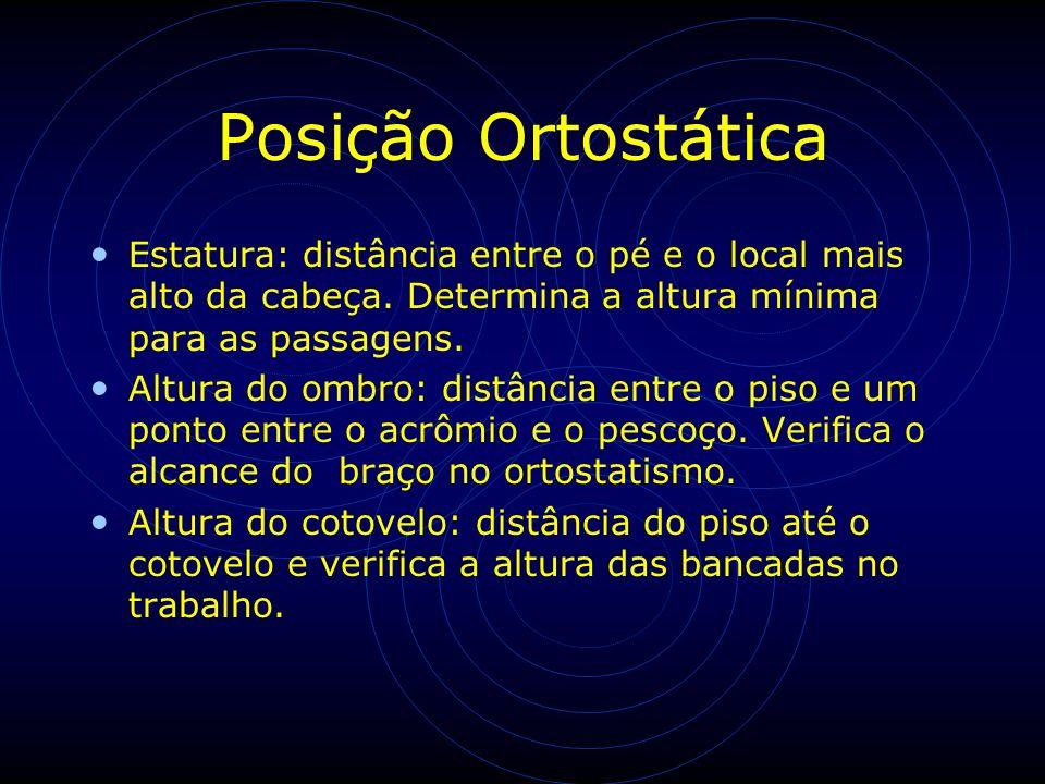 Posição Ortostática Estatura: distância entre o pé e o local mais alto da cabeça. Determina a altura mínima para as passagens. Altura do ombro: distân