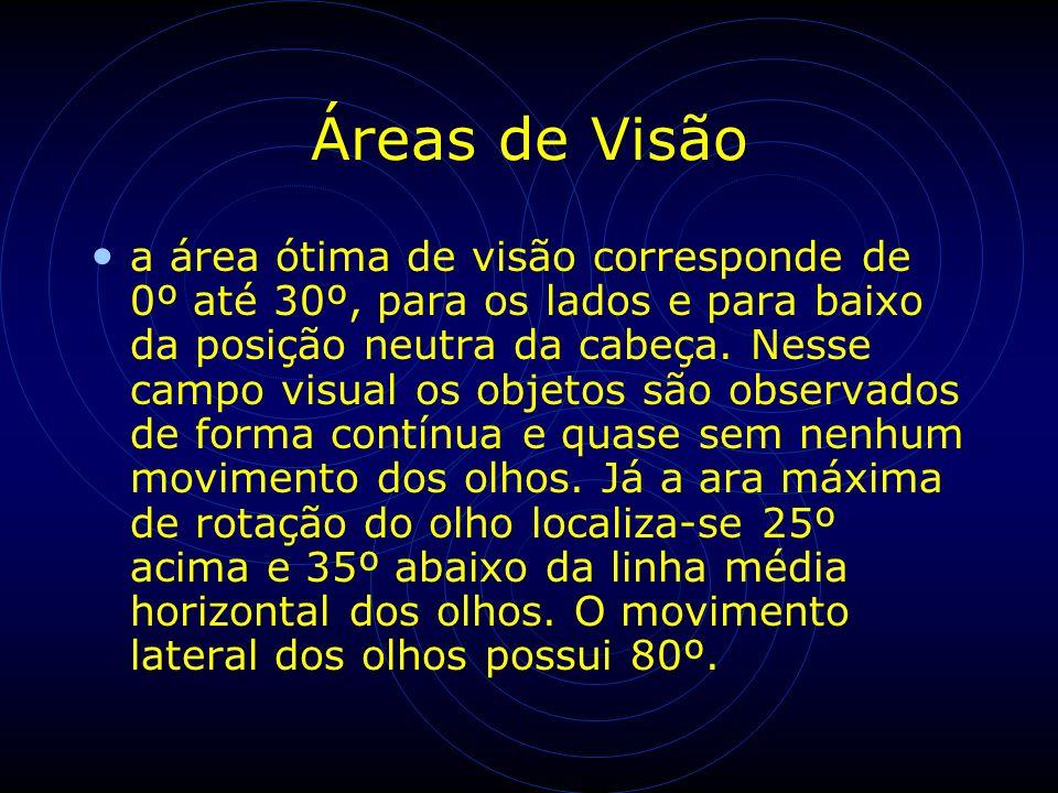 Áreas de Visão a área ótima de visão corresponde de 0º até 30º, para os lados e para baixo da posição neutra da cabeça. Nesse campo visual os objetos