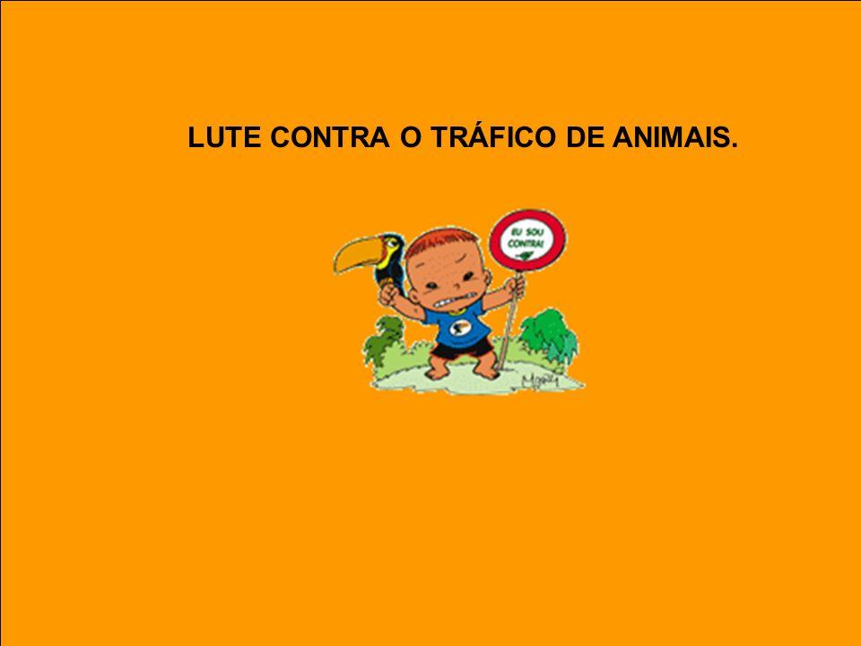 LUTE CONTRA O TRÁFICO DE ANIMAIS.