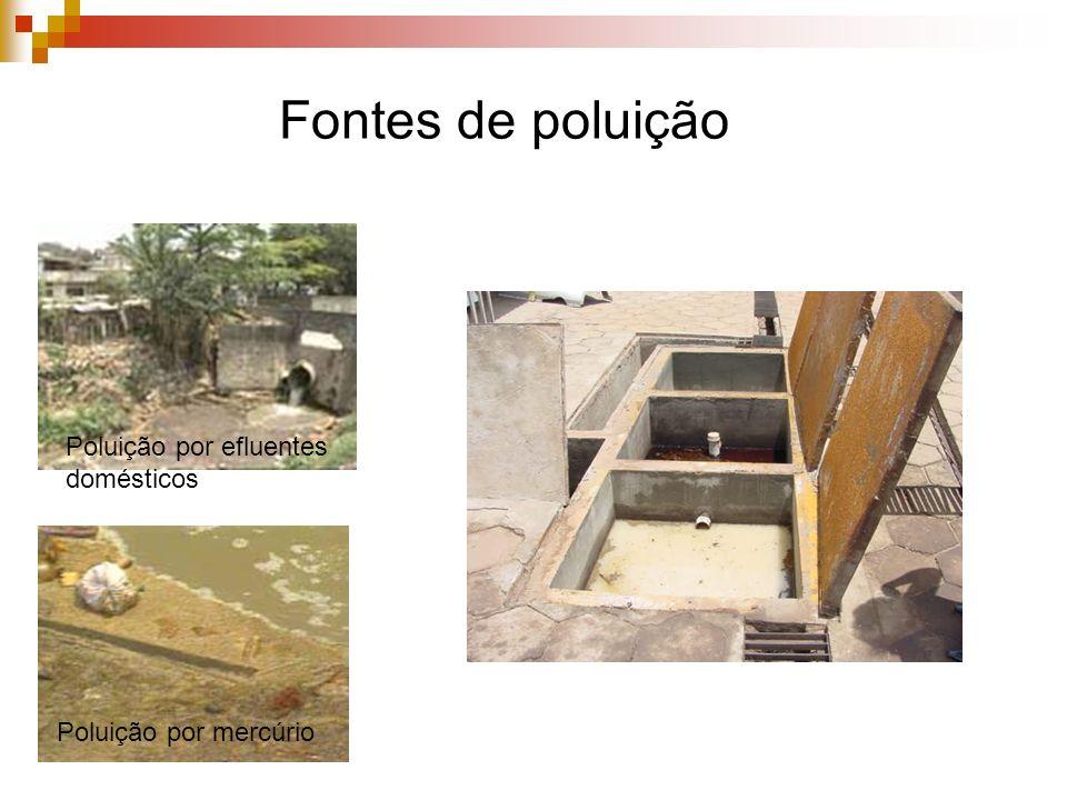 Poluição por mercúrio Poluição por efluentes domésticos Fontes de poluição
