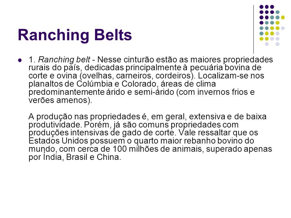 Ranching Belts 1. Ranching belt - Nesse cinturão estão as maiores propriedades rurais do país, dedicadas principalmente à pecuária bovina de corte e o