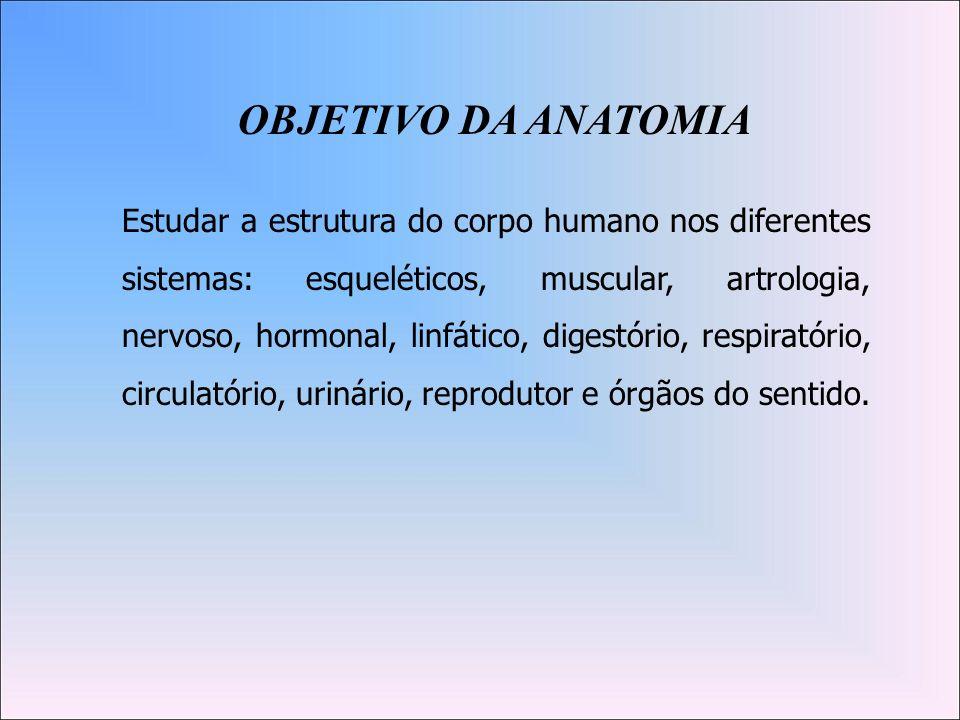 ANATOMIA SISTÊMICA Sistema esquelético (Osteologia) Sistema Articular (Artrologia) Sistema Muscular (Miologia) Sistema Nervoso ( Neurologia) Sistema Tegumentar (Dermatologia) Sistema Circulatório (Angiologia) Sistema Disgestório ou Digestivo (Gastroenterologia) Sistema Respiratório (Pneumologia) Sistema Urinário (Urologia) Sistema Endócrino (Endocrinologia) Sistema Reprodutor