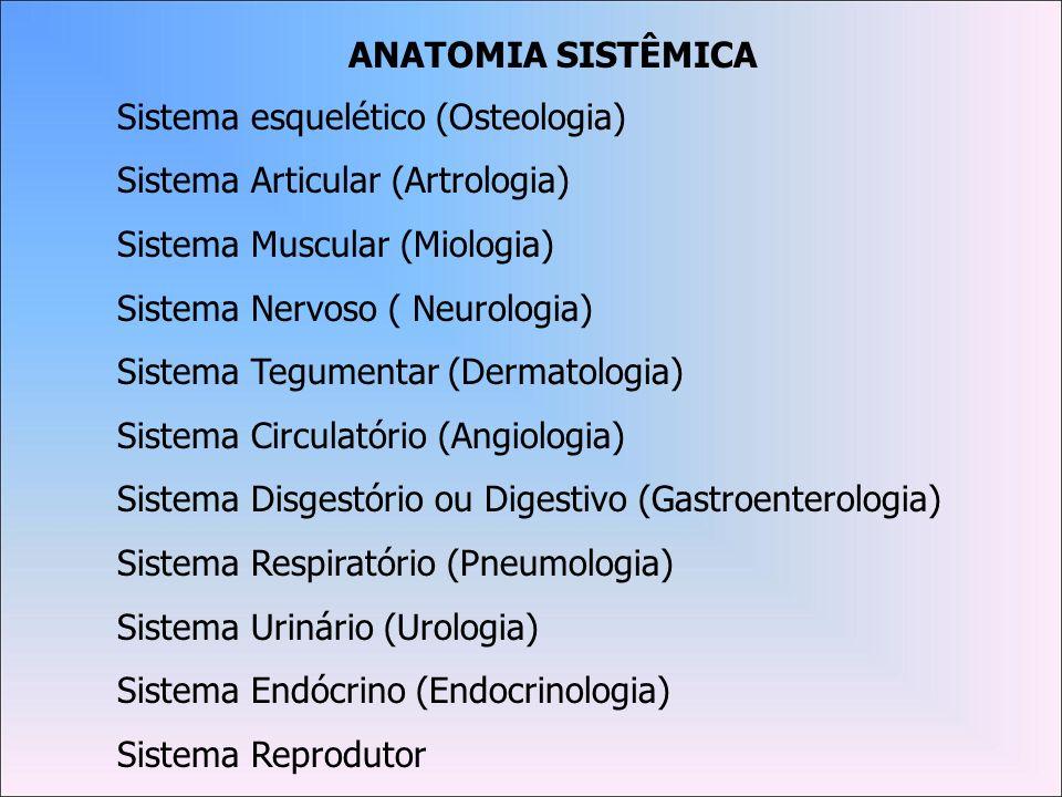 Osteologia: É o estudo dos ossos.Cada osso do nosso sistema esquelético é um órgão individual.