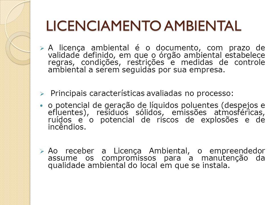 Documentos técnicos para processo de licenciamento Requerimento – Caracterização do Empreendimento - FCE Termo de Referência Estudos Ambientais (EIA/RIMA, PCA, RCA, etc) Projeto Básico Ambiental (PAE, PGRS, PRAD, Programas de monitoramento, educação ambiental, etc).
