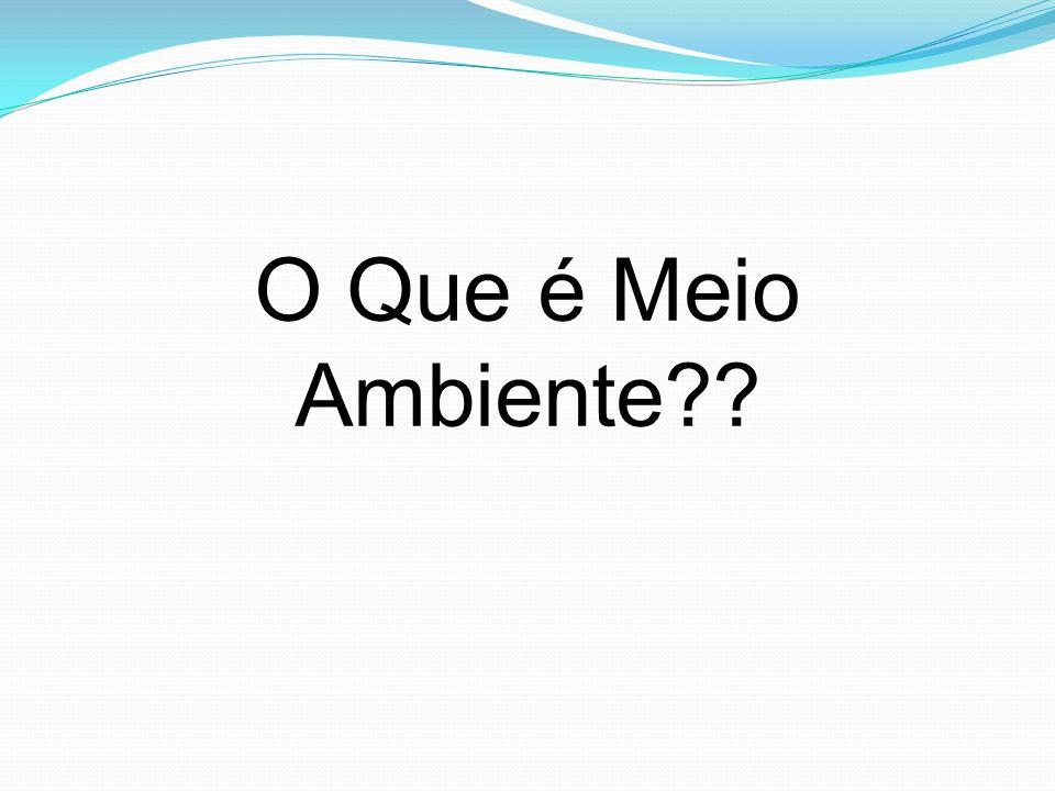 Década de 90 - Conferência Mundial de Desenvolvimento e Meio Ambiente: Rio-92; - Passaram a compreender a necessidade de implementar uma nova visão de desenvolvimento econômico;