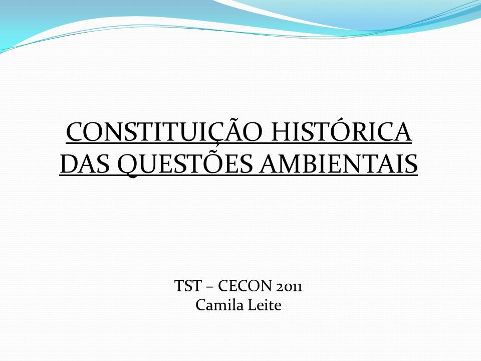 CONSTITUIÇÃO HISTÓRICA DAS QUESTÕES AMBIENTAIS TST – CECON 2011 Camila Leite