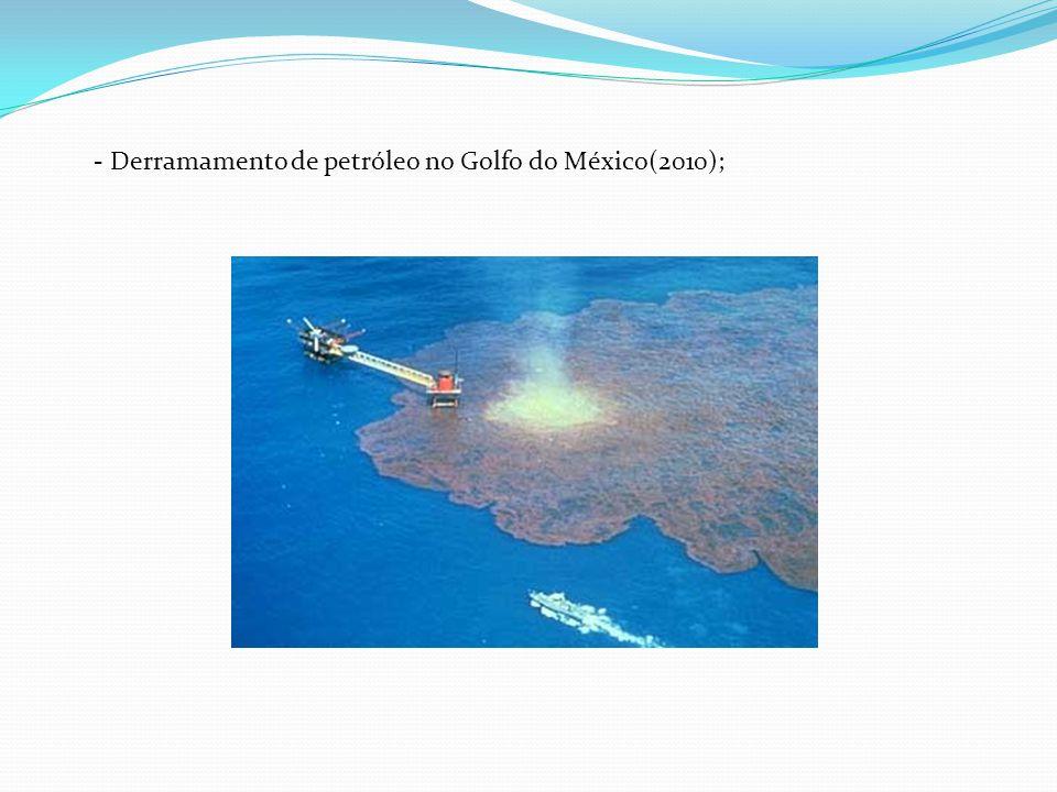 - Derramamento de petróleo no Golfo do México(2010);
