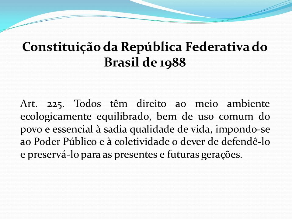 Constituição da República Federativa do Brasil de 1988 Art. 225. Todos têm direito ao meio ambiente ecologicamente equilibrado, bem de uso comum do po