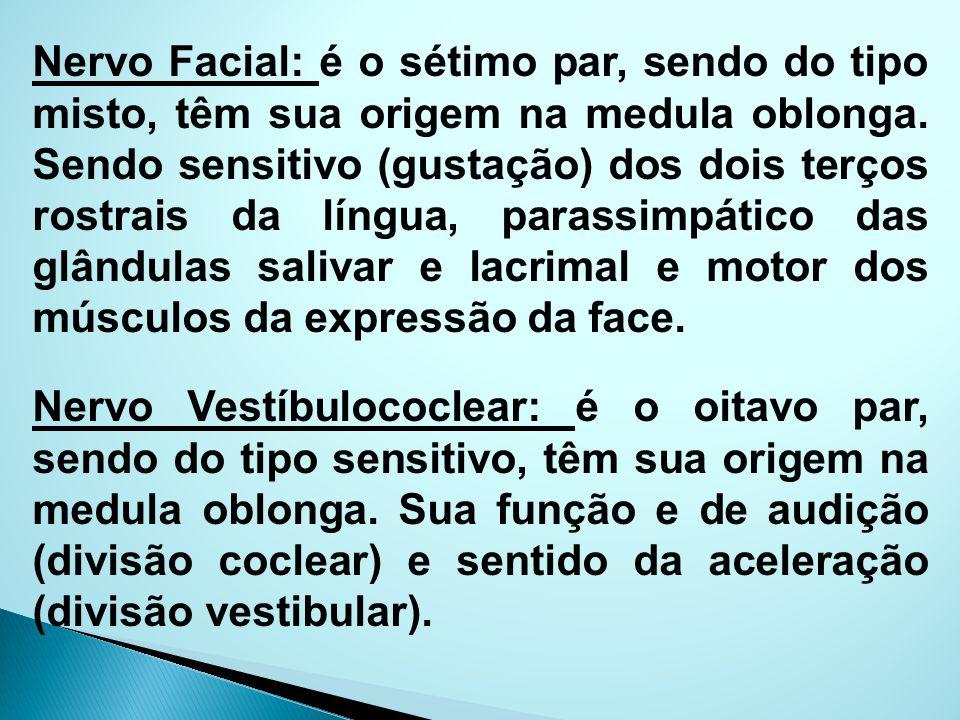 Nervo Facial: é o sétimo par, sendo do tipo misto, têm sua origem na medula oblonga. Sendo sensitivo (gustação) dos dois terços rostrais da língua, pa