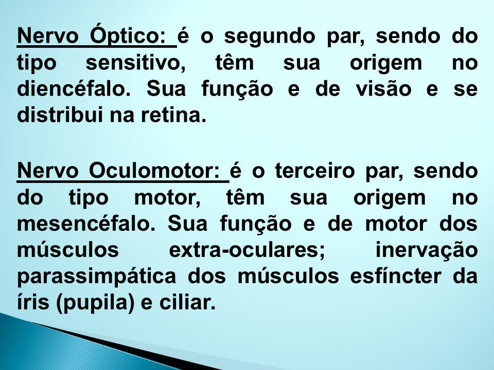 Nervo Óptico: é o segundo par, sendo do tipo sensitivo, têm sua origem no diencéfalo. Sua função e de visão e se distribui na retina. Nervo Oculomotor