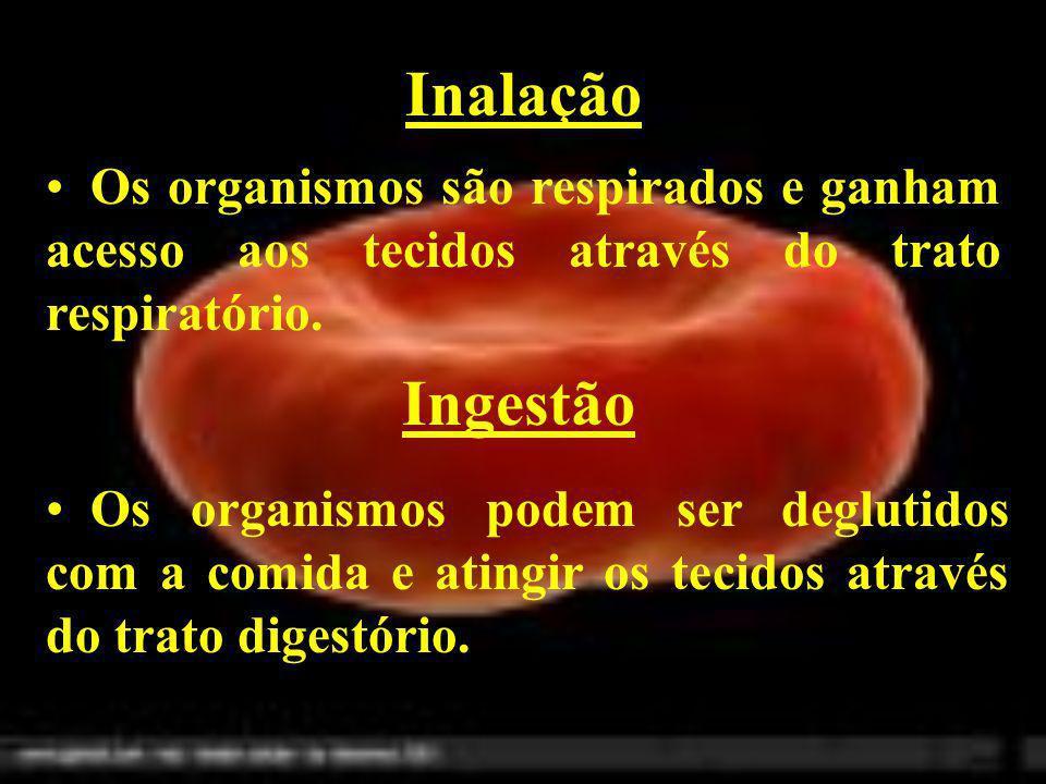Transmissão sexual Os organismos podem ser transmitidos em uma relação sexual quando um dos parceiros estiver infectado.