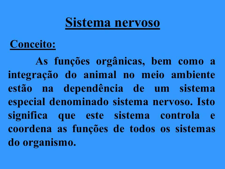 Sistema nervoso Conceito: As funções orgânicas, bem como a integração do animal no meio ambiente estão na dependência de um sistema especial denominad