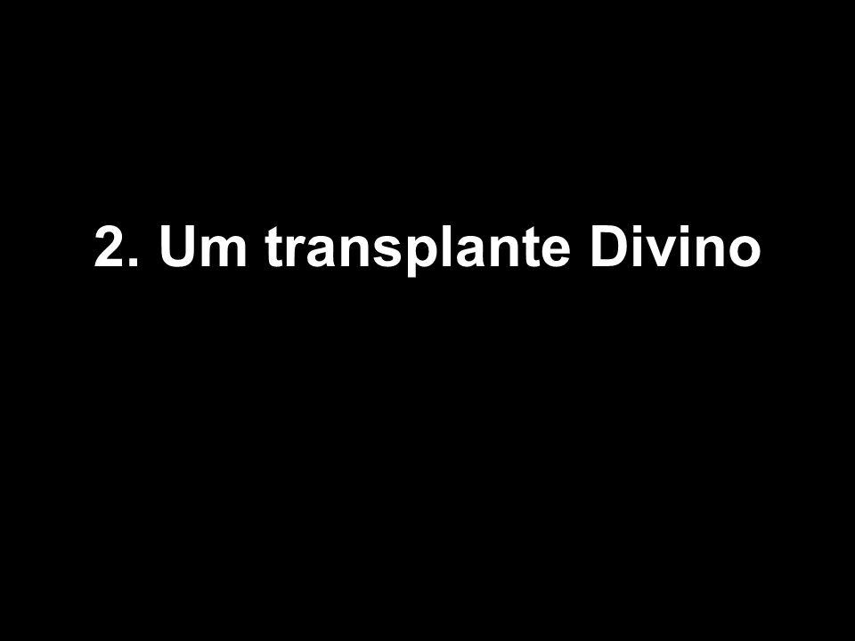 2 2. Um transplante Divino