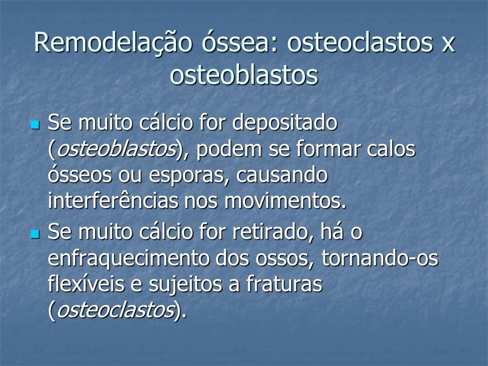 Remodelação óssea: osteoclastos x osteoblastos Se muito cálcio for depositado (osteoblastos), podem se formar calos ósseos ou esporas, causando interf