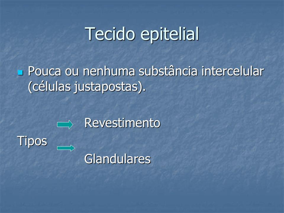 Tecido epitelial Pouca ou nenhuma substância intercelular (células justapostas). Pouca ou nenhuma substância intercelular (células justapostas). Reves