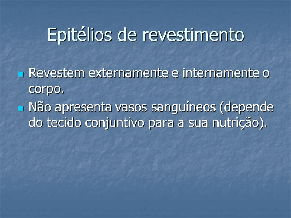 Epitélios de revestimento Revestem externamente e internamente o corpo. Revestem externamente e internamente o corpo. Não apresenta vasos sanguíneos (